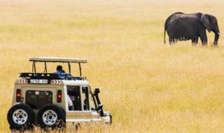 12 Days Kenya Rwanda Uganda Safari