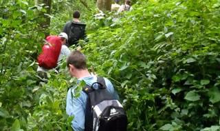 7 Days Uganda, Rwanda Gorilla Tour